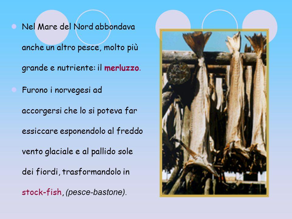 Nel Mare del Nord abbondava anche un altro pesce, molto più grande e nutriente: il merluzzo. Furono i norvegesi ad accorgersi che lo si poteva far ess