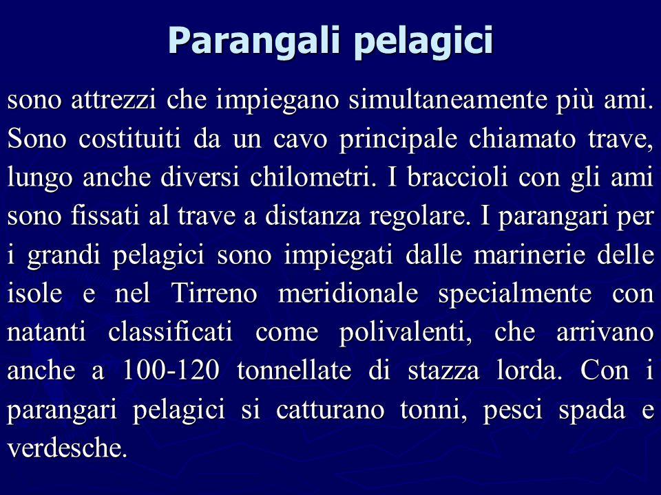 Parangali pelagici sono attrezzi che impiegano simultaneamente più ami. Sono costituiti da un cavo principale chiamato trave, lungo anche diversi chil