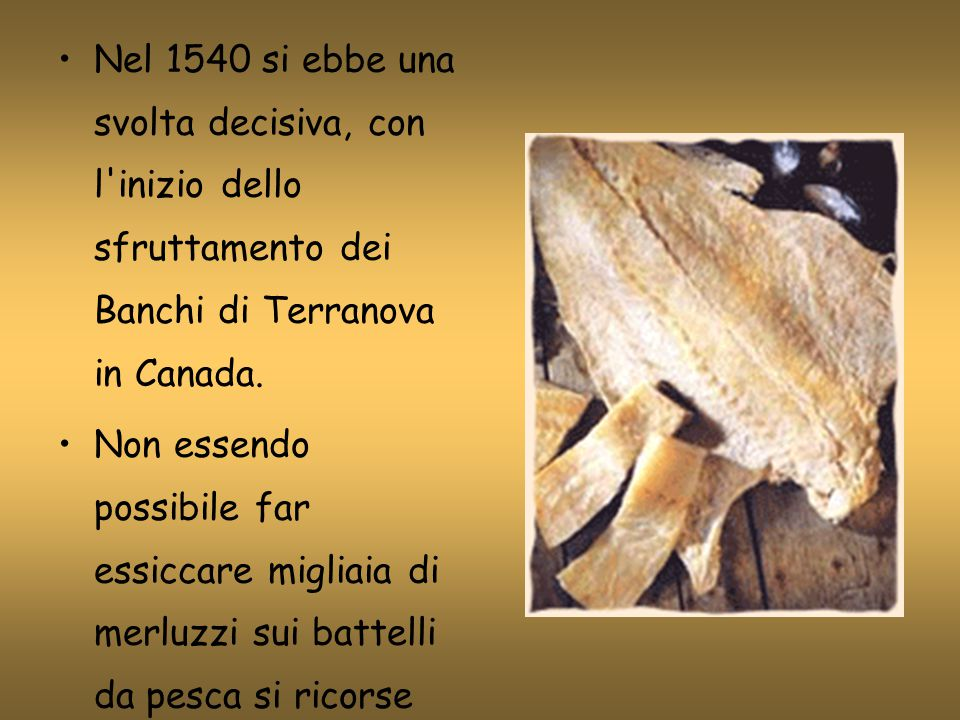 Nel 1540 si ebbe una svolta decisiva, con l'inizio dello sfruttamento dei Banchi di Terranova in Canada. Non essendo possibile far essiccare migliaia
