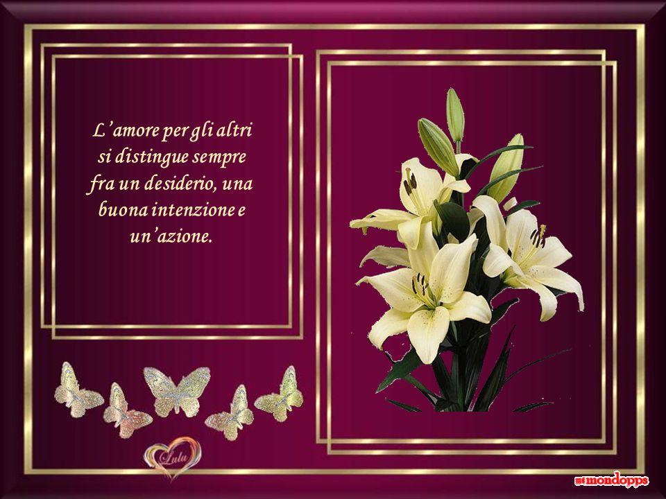 La beltà senza la bontà è come un vino senza aroma.