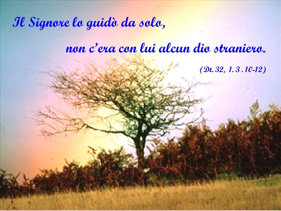Il Signore lo guidò da solo, non c'era con lui alcun dio straniero. (Dt. 32, 1. 3. 10-12)