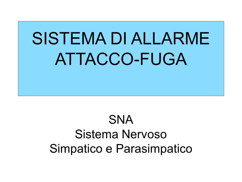 SISTEMA DI ALLARME ATTACCO-FUGA SNA Sistema Nervoso Simpatico e Parasimpatico