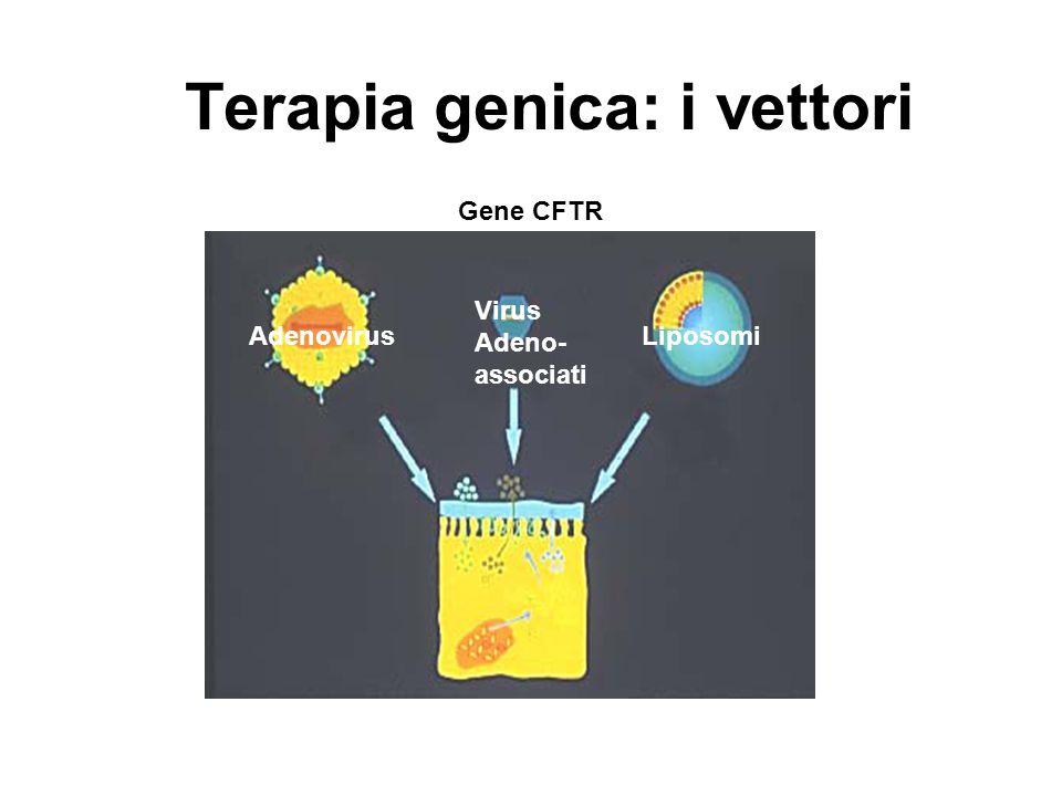 Terapia genica: i vettori Gene CFTR Virus Adeno- associati LiposomiAdenovirus