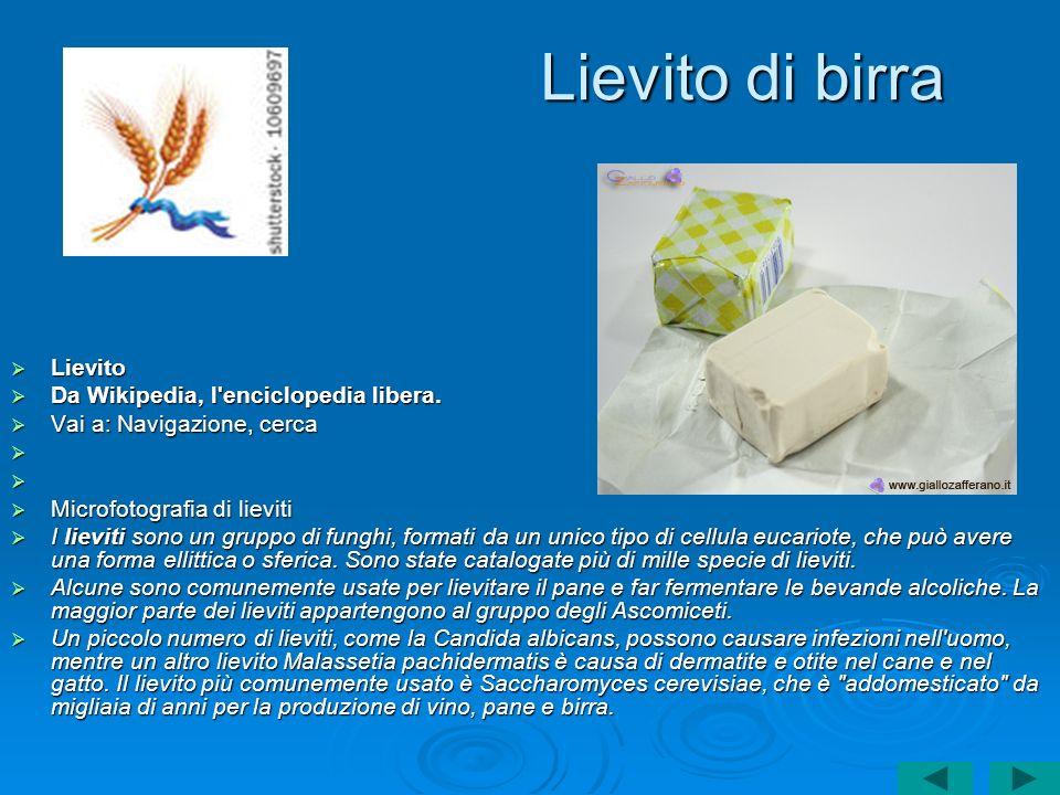 Lievito di birra Lievito Lievito Da Wikipedia, l'enciclopedia libera. Da Wikipedia, l'enciclopedia libera. Vai a: Navigazione, cerca Vai a: Navigazion