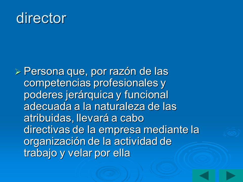 director Persona que, por razón de las competencias profesionales y poderes jerárquica y funcional adecuada a la naturaleza de las atribuidas, llevará