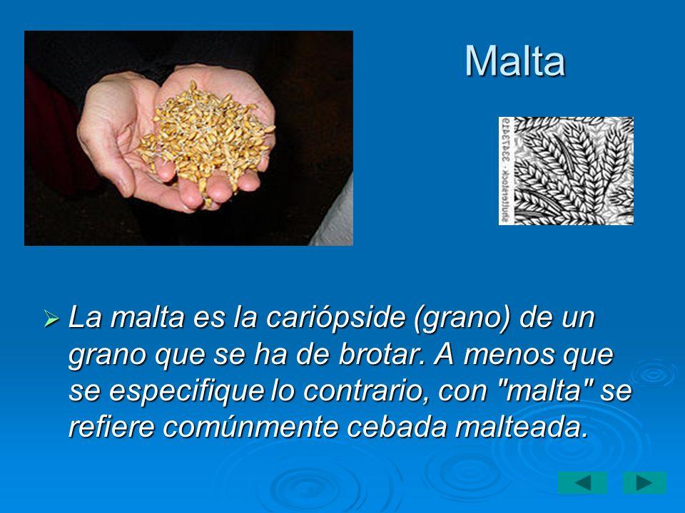Malta La malta es la cariópside (grano) de un grano que se ha de brotar. A menos que se especifique lo contrario, con