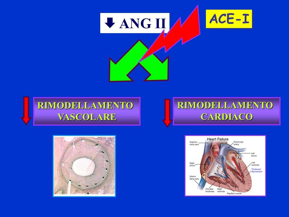 ACE-I RIMODELLAMENTOVASCOLARE RIMODELLAMENTOCARDIACO ANG II