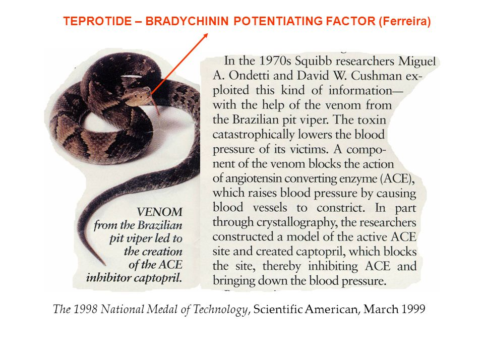 The 1998 National Medal of Technology, Scientific American, March 1999 TEPROTIDE – BRADYCHININ POTENTIATING FACTOR (Ferreira)
