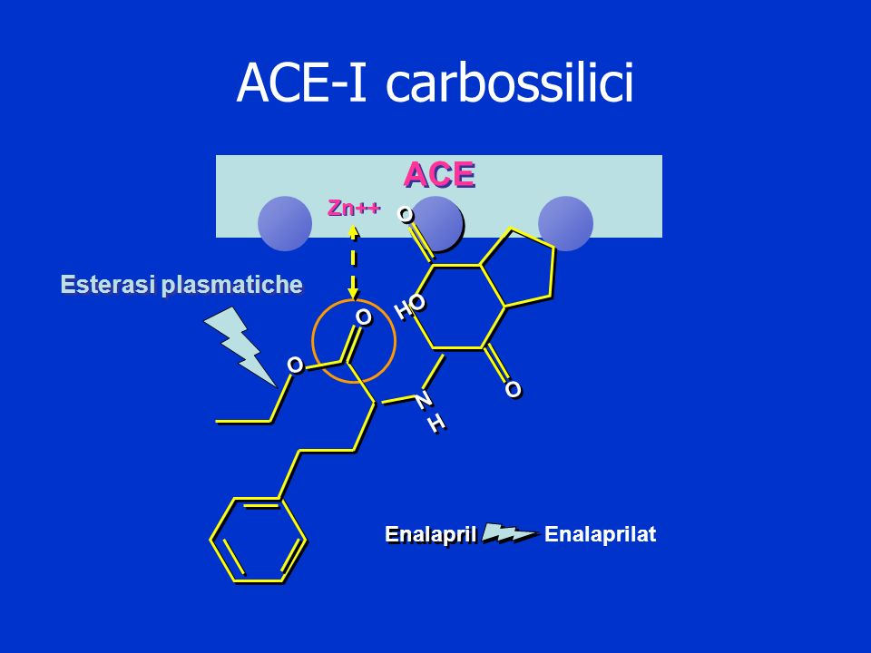ACE-I carbossilici Enalaprilat Esterasi plasmatiche Zn++ ACE Enalapril O O O O O O O O HO NHNH NHNH