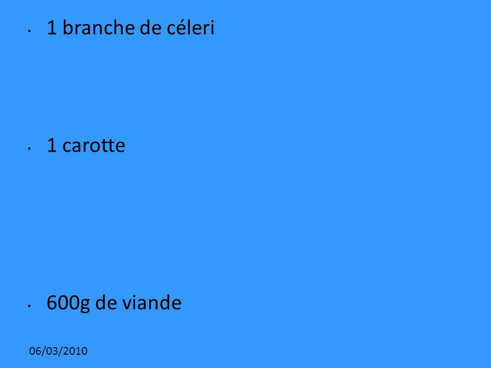 06/03/2010 1 branche de céleri 1 carotte 600g de viande