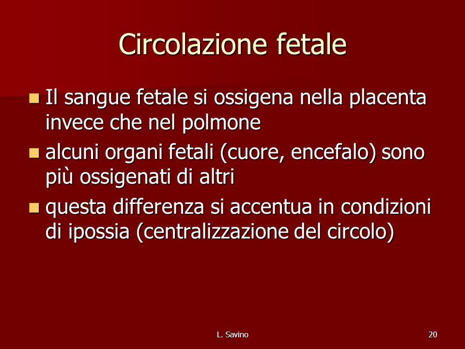 L. Savino20 Circolazione fetale Il sangue fetale si ossigena nella placenta invece che nel polmone Il sangue fetale si ossigena nella placenta invece