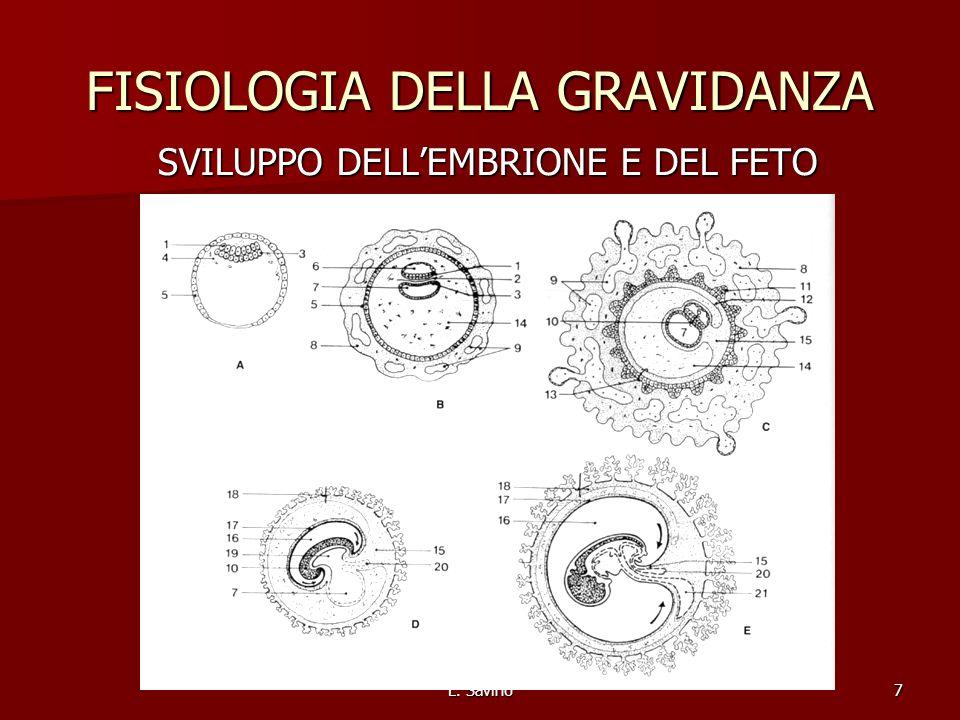 L. Savino7 FISIOLOGIA DELLA GRAVIDANZA SVILUPPO DELLEMBRIONE E DEL FETO