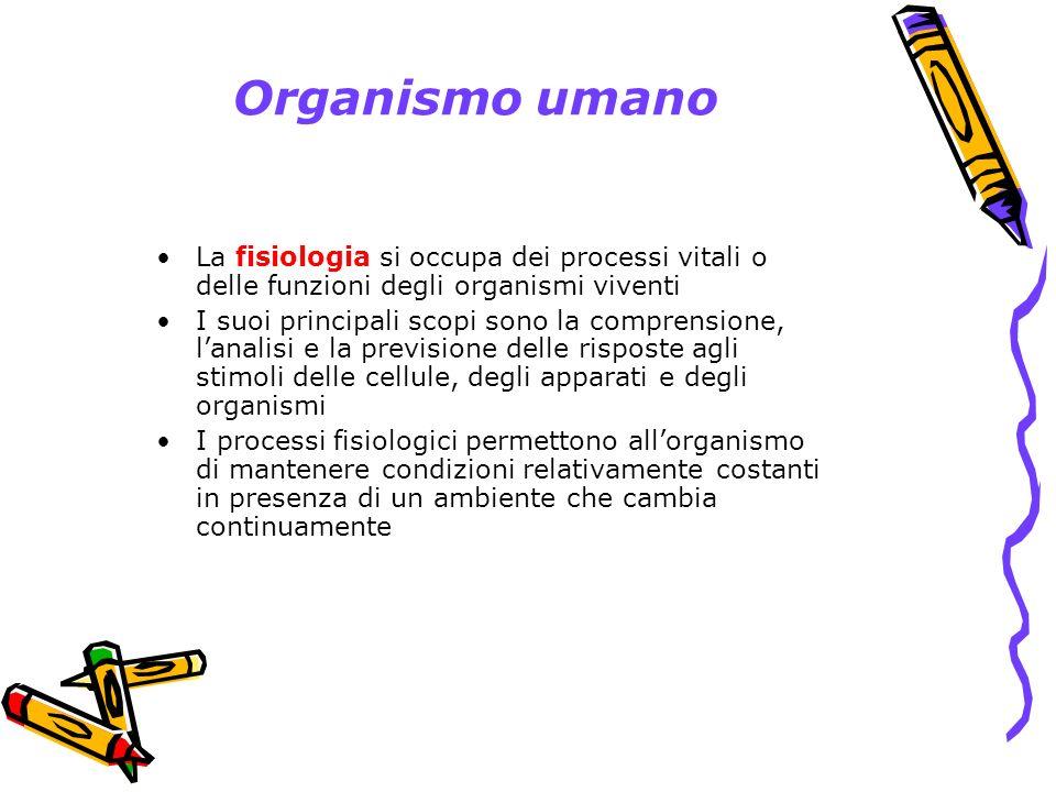 Organizzazione strutturale e funzionale Il corpo si può suddividere concettualmente in 7 livelli strutturali: molecolare degli organuli cellulare tissutale degli organi degli apparati dellorganismo completo Sebbene i limiti fra ciascuno dei livelli non siano sempre chiari, le categorie facilitano la comprensione dellintero corpo