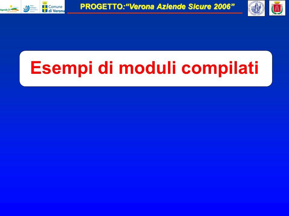 PROGETTO:Verona Aziende Sicure 2006 Esempi di moduli compilati