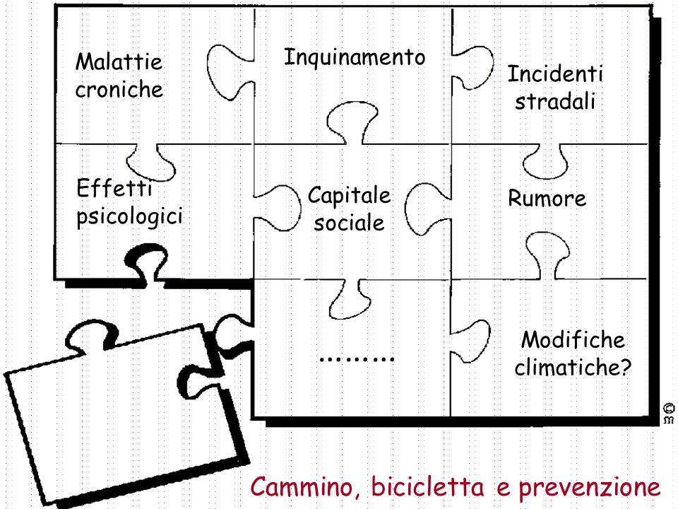 4 Inquinamento Malattie croniche Cammino, bicicletta e prevenzione Incidenti stradali Effetti psicologici Modifiche climatiche? Rumore Capitale social