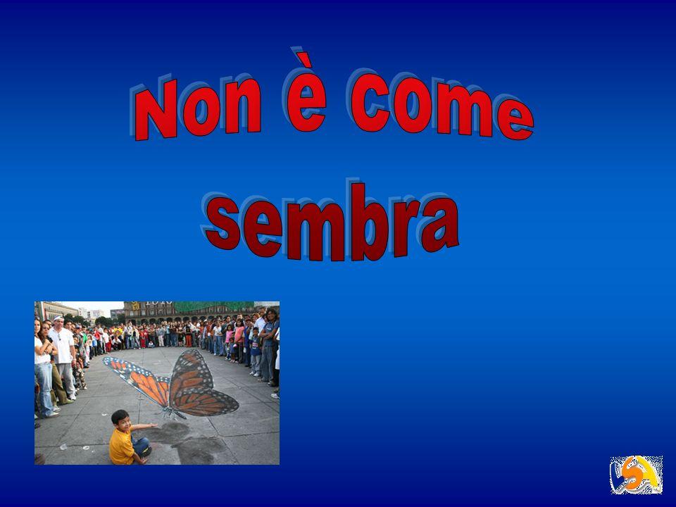 Relazione a cura di: Bellini Michele Compagnoni Francesca Lazzari Simone Oliva Alberto Tomasoni Isabella Valmarin Sergio Liceo scientifico G.