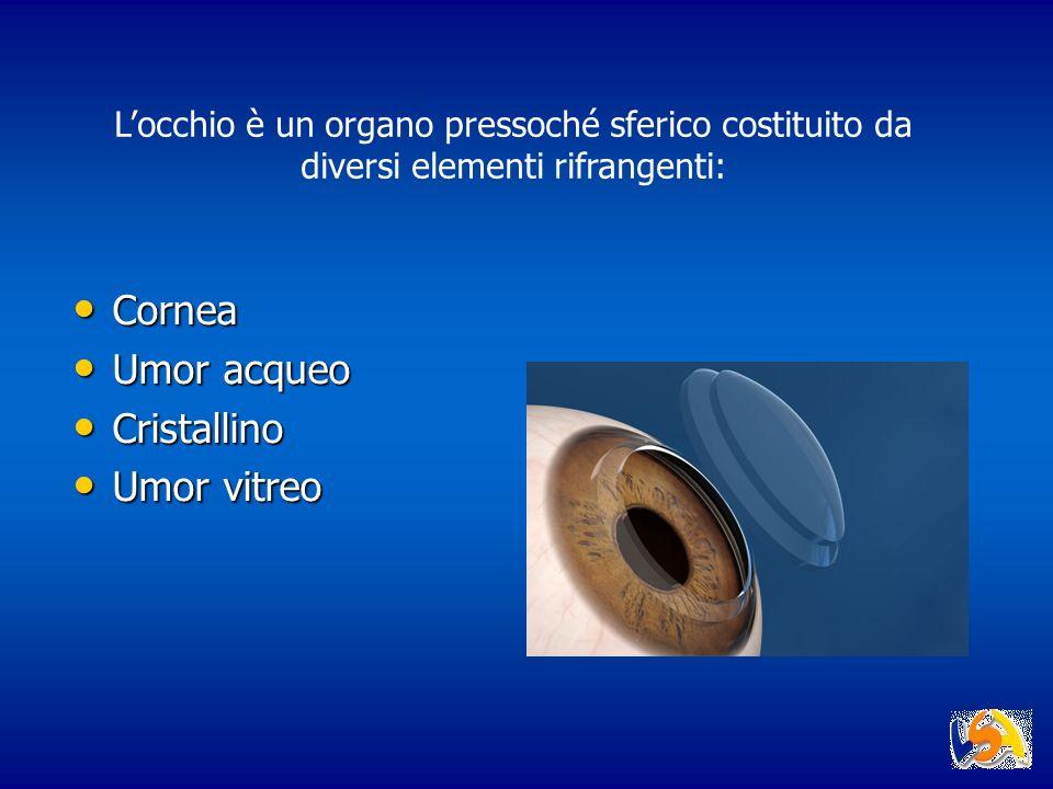 Locchio è un organo pressoché sferico costituito da diversi elementi rifrangenti: Cornea Umor acqueo Cristallino Umor vitreo