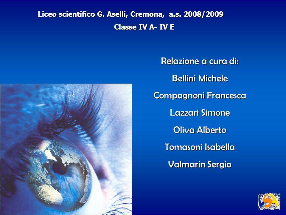 Relazione a cura di: Bellini Michele Compagnoni Francesca Lazzari Simone Oliva Alberto Tomasoni Isabella Valmarin Sergio Liceo scientifico G. Aselli,