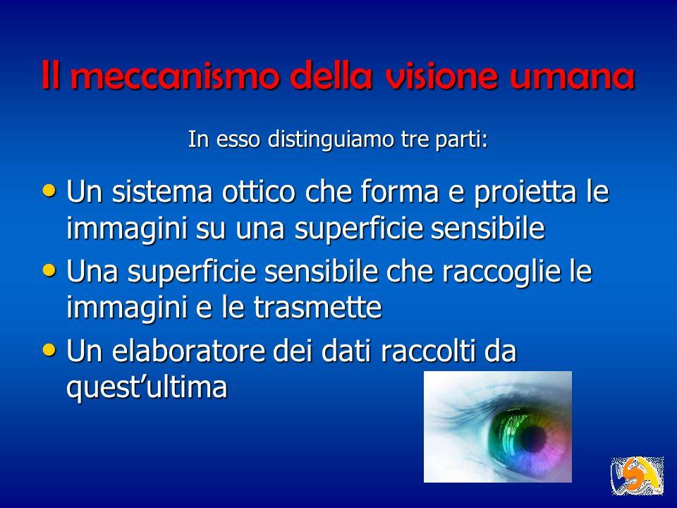 Il meccanismo della visione umana Un sistema ottico che forma e proietta le immagini su una superficie sensibile Un sistema ottico che forma e proiett