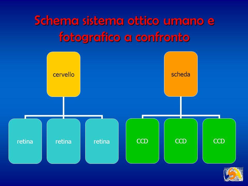 Schema sistema ottico umano e fotografico a confronto cervello retina scheda CCD