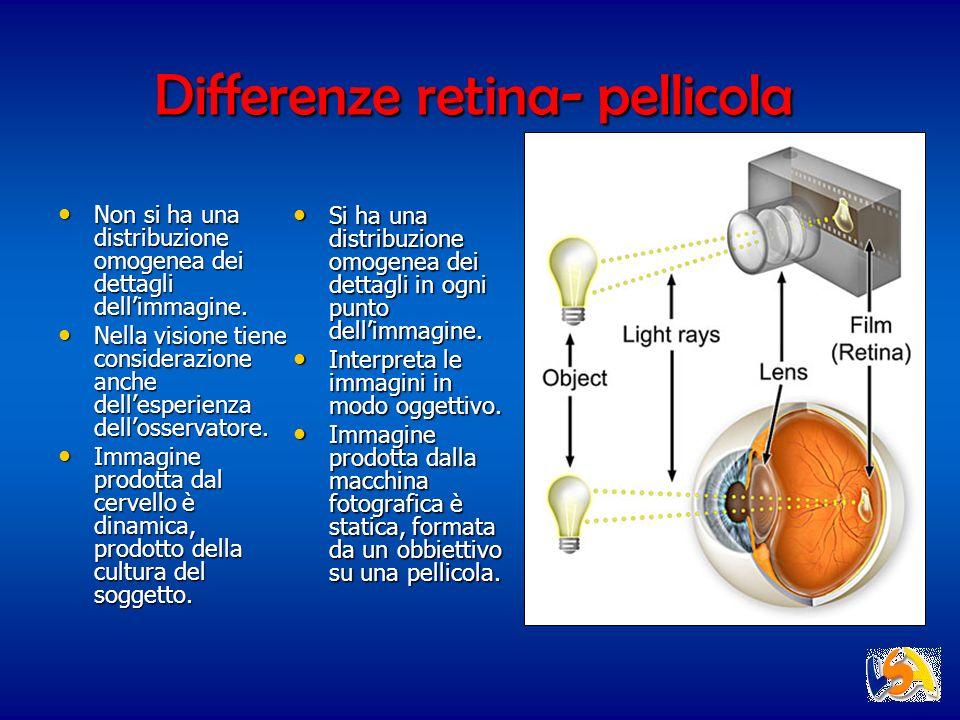 Differenze retina- pellicola Non si ha una distribuzione omogenea dei dettagli dellimmagine. Non si ha una distribuzione omogenea dei dettagli dellimm