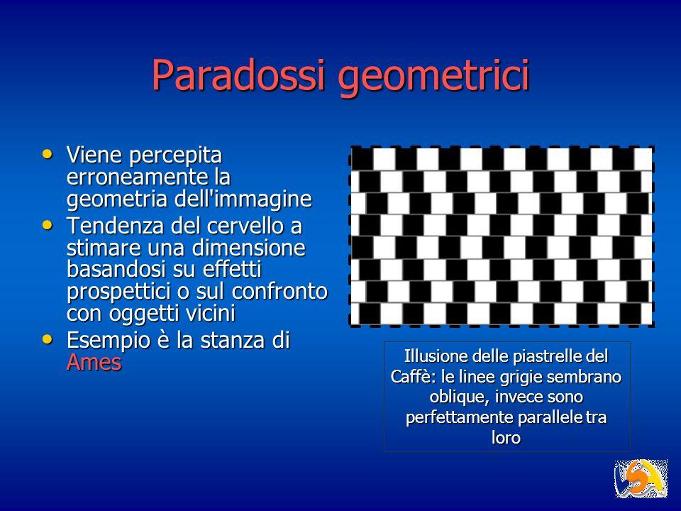 Paradossi geometrici Viene percepita erroneamente la geometria dell'immagine Viene percepita erroneamente la geometria dell'immagine Tendenza del cerv
