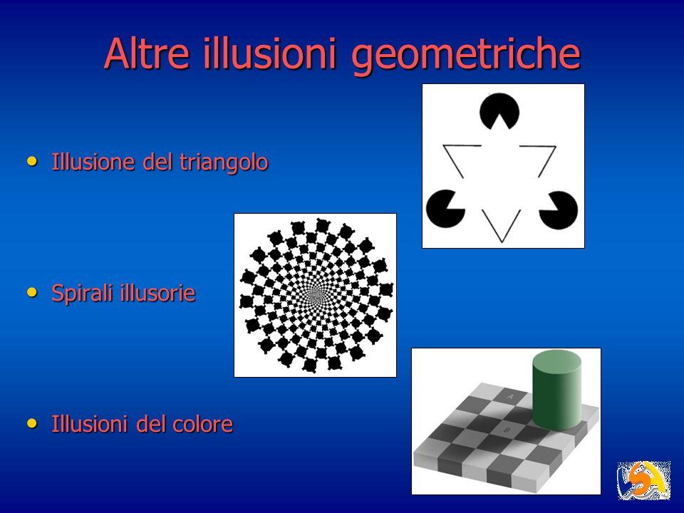 Altre illusioni geometriche Illusione del triangolo Illusione del triangolo Spirali illusorie Spirali illusorie Illusioni del colore Illusioni del col