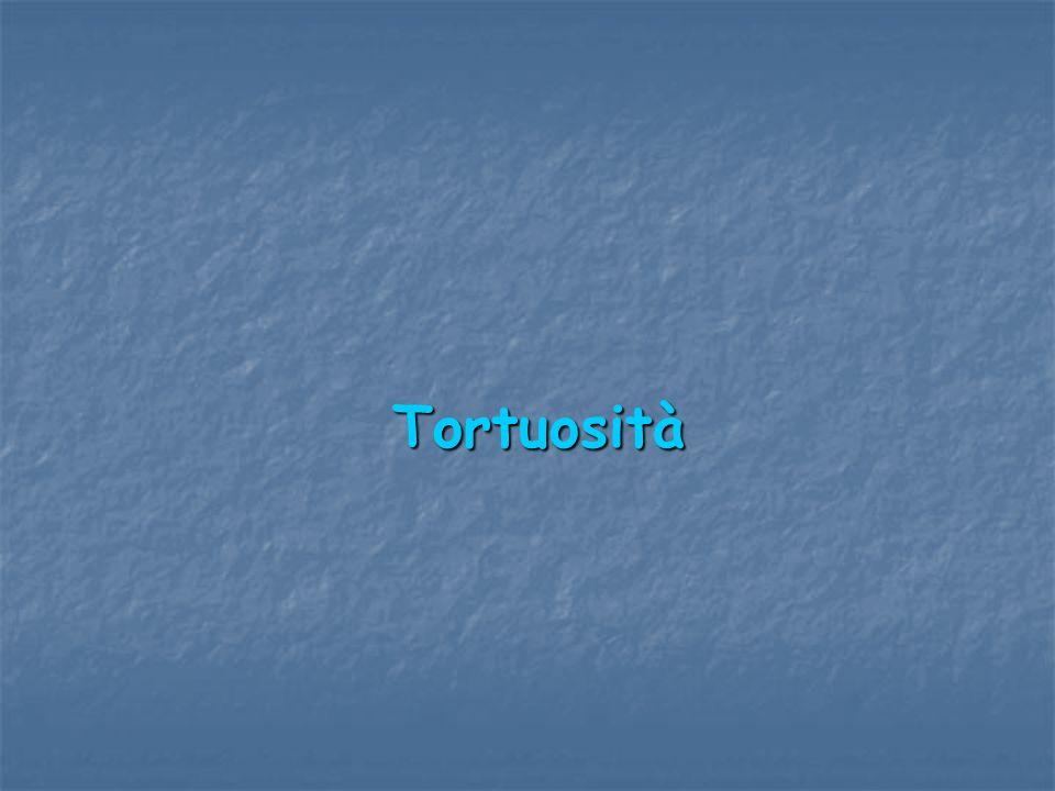 Tortuosità Tortuosità
