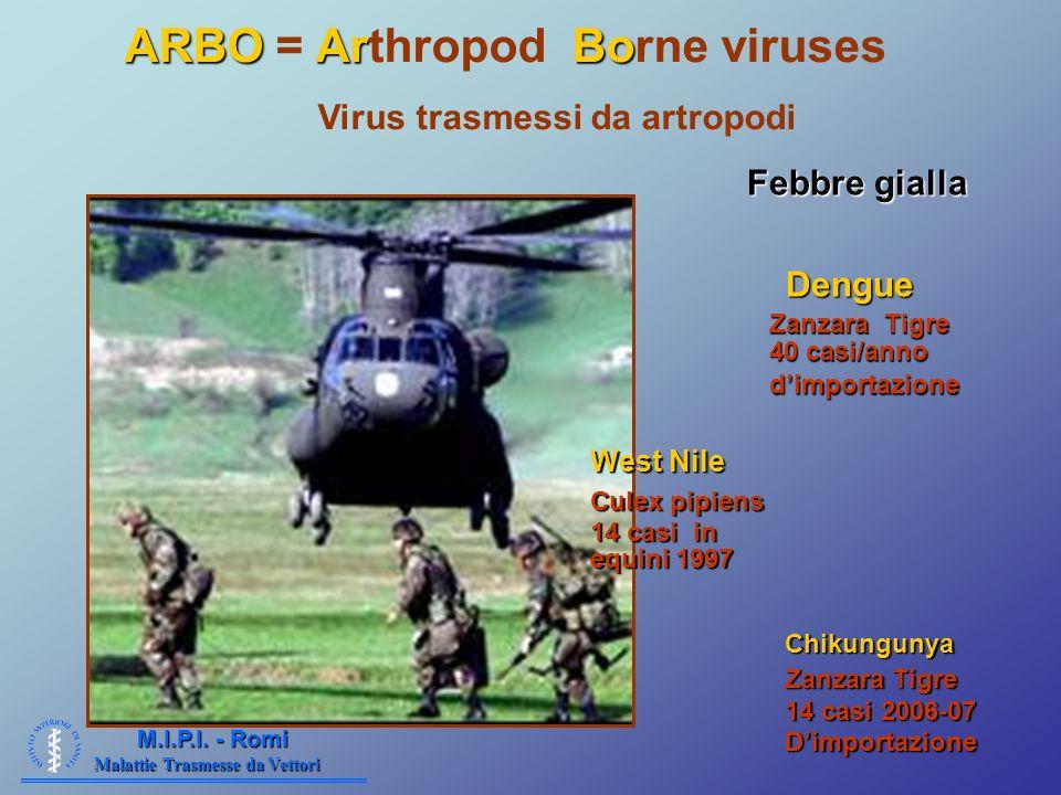 Malattie Trasmesse da Vettori M.I.P.I. - Romi Effetto eterotermi ARBOArBo ARBO = Arthropod Borne viruses Virus trasmessi da artropodi Febbre gialla De