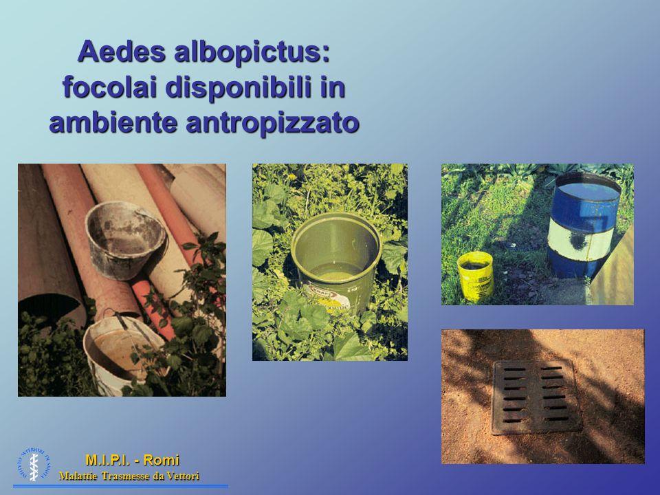 Malattie Trasmesse da Vettori M.I.P.I. - Romi Aedes albopictus: focolai disponibili in ambiente antropizzato