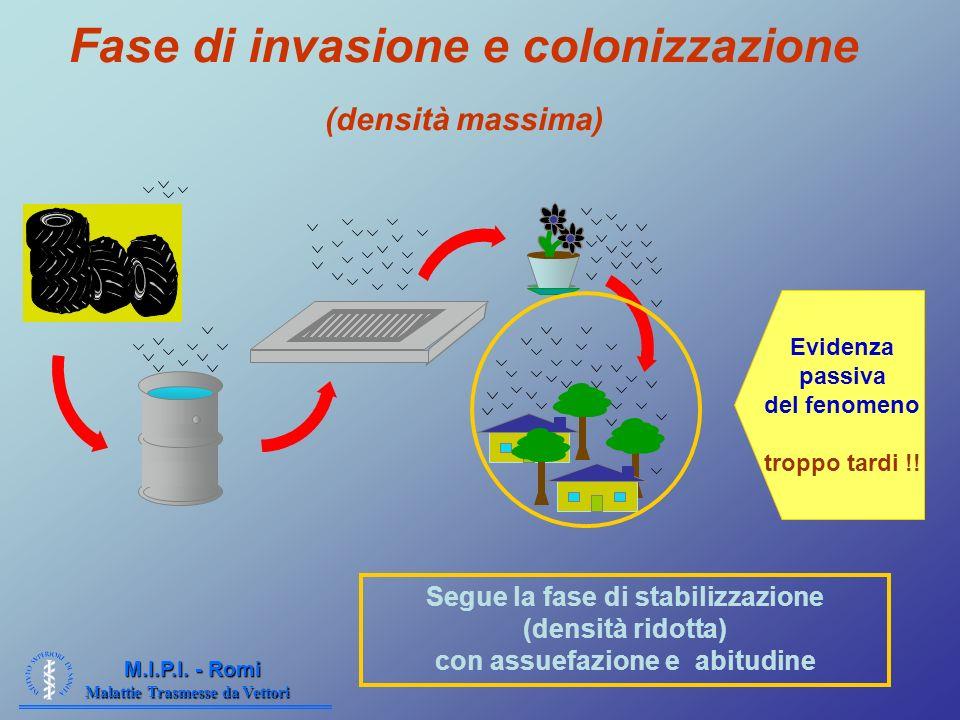 Malattie Trasmesse da Vettori M.I.P.I. - Romi Fase di invasione e colonizzazione (densità massima) Segue la fase di stabilizzazione (densità ridotta)