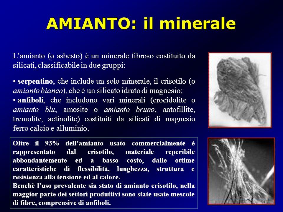 AMIANTO: il minerale Lamianto (o asbesto) è un minerale fibroso costituito da silicati, classificabile in due gruppi: serpentino, che include un solo