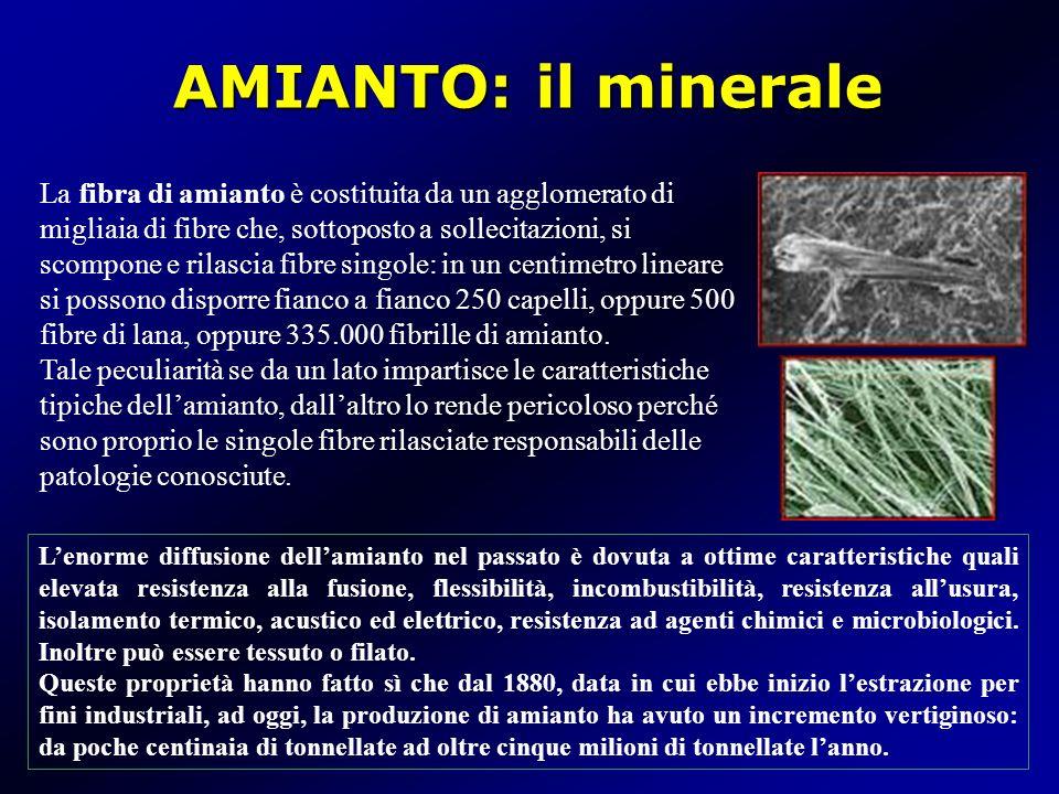 AMIANTO: il minerale Lenorme diffusione dellamianto nel passato è dovuta a ottime caratteristiche quali elevata resistenza alla fusione, flessibilità,