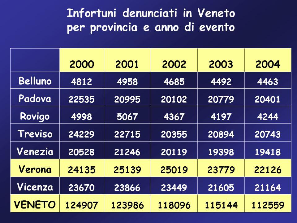 Infortuni denunciati in Veneto per provincia e anno di evento 20002001200220032004 Belluno 48124958468544924463 Padova 2253520995201022077920401 Rovig