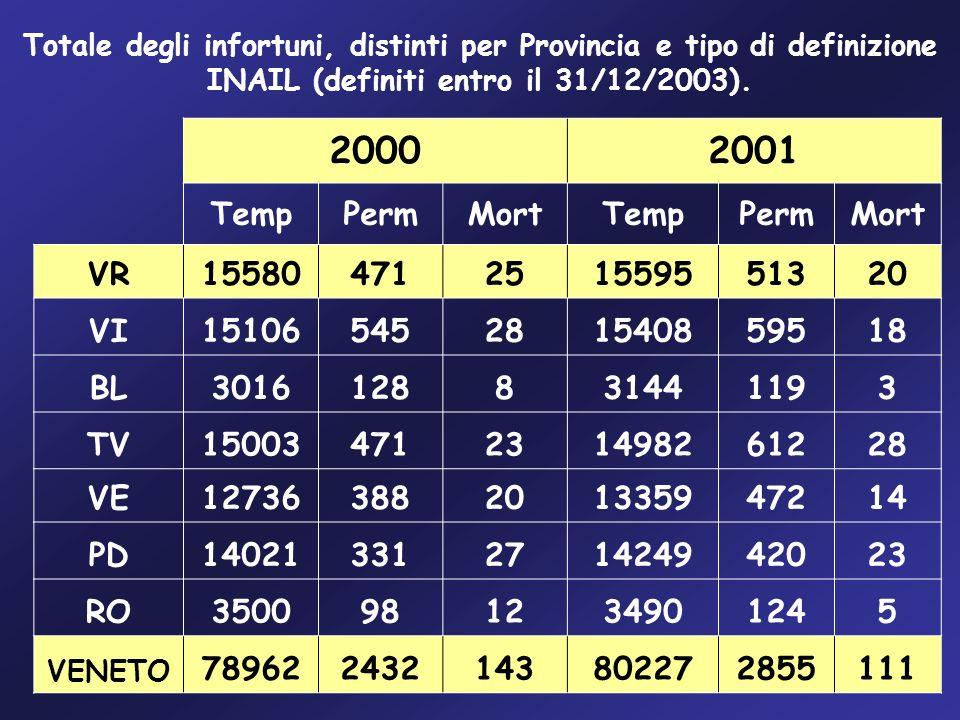 Totale degli infortuni, distinti per Provincia e tipo di definizione INAIL (definiti entro il 31/12/2003). 20002001 TempPermMortTempPermMort VR1558047