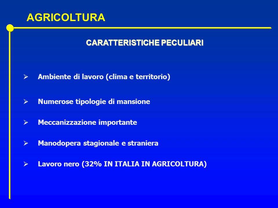CARATTERISTICHE PECULIARI Ambiente di lavoro (clima e territorio) Numerose tipologie di mansione Meccanizzazione importante Manodopera stagionale e st