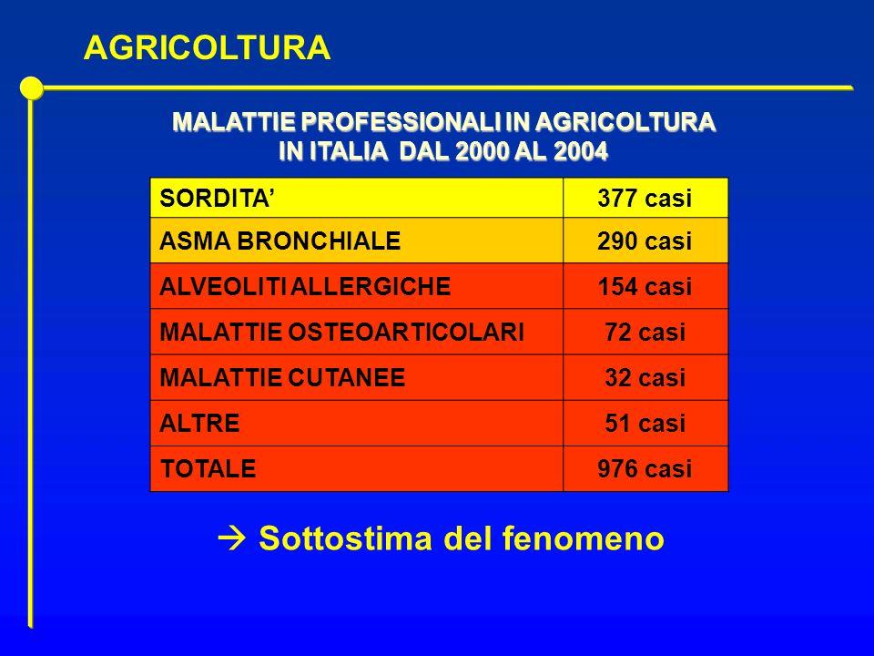 MALATTIE PROFESSIONALI IN AGRICOLTURA IN ITALIA DAL 2000 AL 2004 SORDITA377 casi ASMA BRONCHIALE290 casi ALVEOLITI ALLERGICHE154 casi MALATTIE OSTEOAR