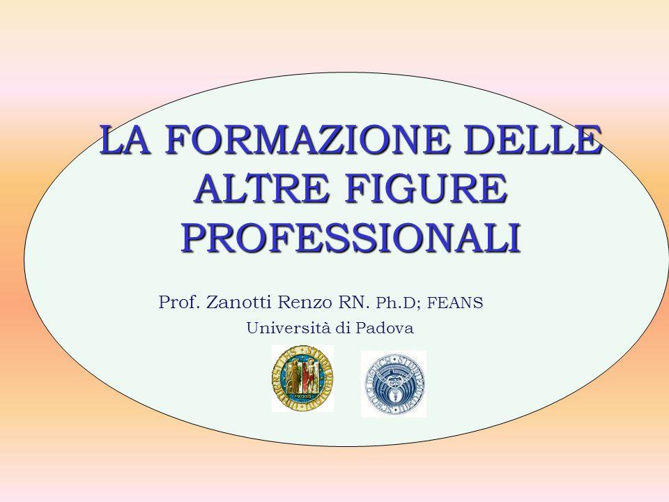 LA FORMAZIONE DELLE ALTRE FIGURE PROFESSIONALI Prof. Zanotti Renzo RN. Ph.D; FEANS Università di Padova
