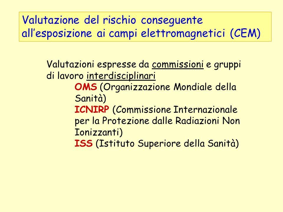 Valutazione del rischio conseguente allesposizione ai campi elettromagnetici (CEM) Valutazioni espresse da commissioni e gruppi di lavoro interdiscipl