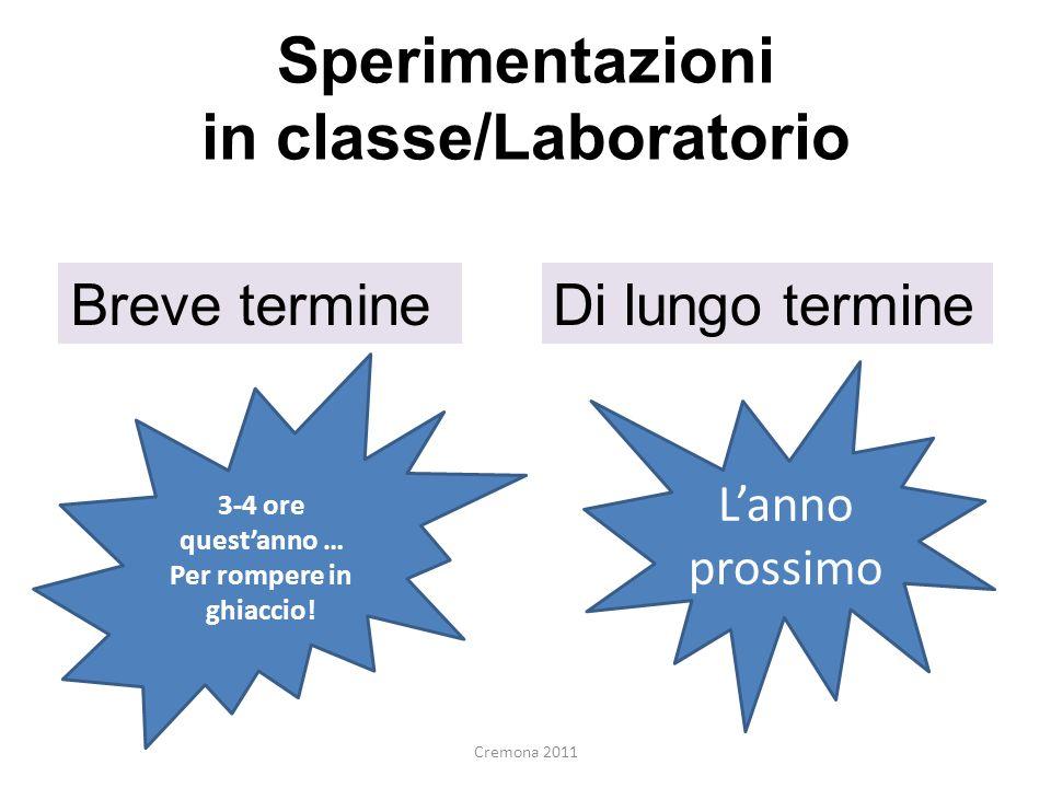 Sperimentazioni in classe/Laboratorio Breve termineDi lungo termine 3-4 ore questanno … Per rompere in ghiaccio! Lanno prossimo Cremona 2011
