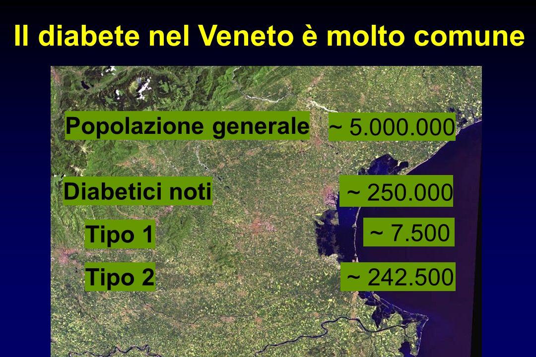Popolazione generale ~ 5.000.000 Diabetici noti ~ 250.000 Tipo 1 ~ 7.500 Tipo 2 ~ 242.500 Il diabete nel Veneto è molto comune