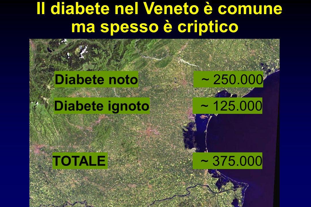 Diabete noto ~ 250.000 Diabete ignoto ~ 125.000 TOTALE ~ 375.000 Il diabete nel Veneto è comune ma spesso è criptico
