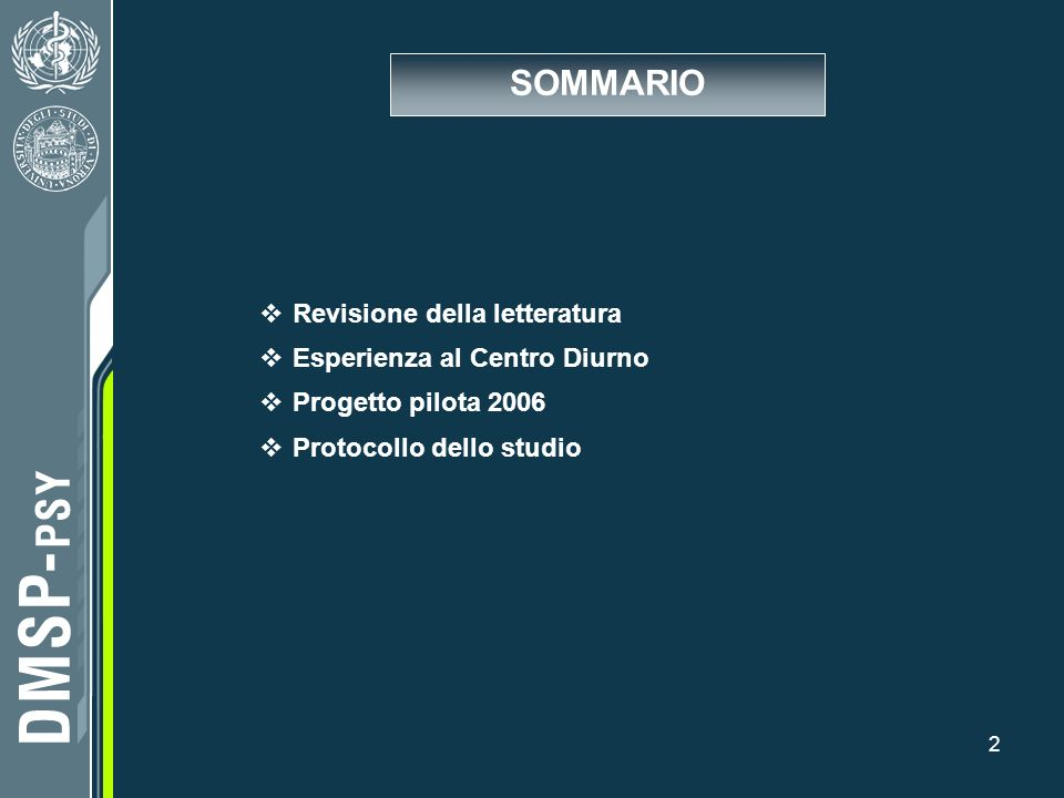 2 Revisione della letteratura Esperienza al Centro Diurno Progetto pilota 2006 Protocollo dello studio SOMMARIO