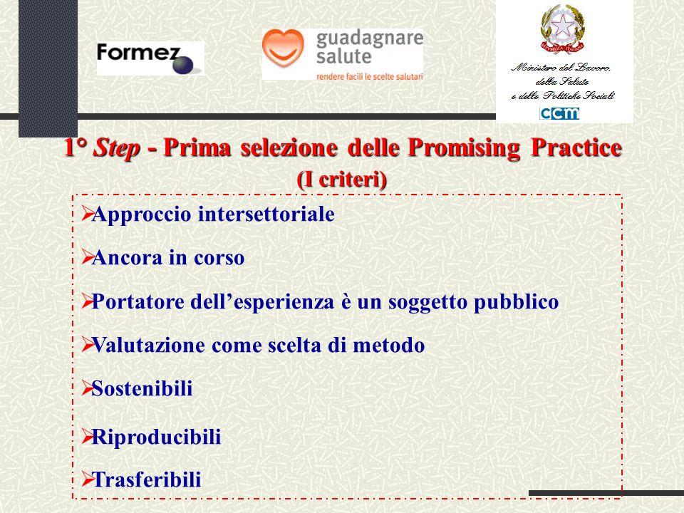 1° Step - Prima selezione delle Promising Practice (I criteri) Approccio intersettoriale Ancora in corso Portatore dellesperienza è un soggetto pubblico Valutazione come scelta di metodo Sostenibili Riproducibili Trasferibili