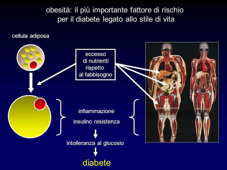 Girls Normal weight (n = 501) Overweight (n = 116) Obese (n = 122) P Age (years)10.7 (2.1)10.4 (2.1)10.5 (2.2)NS BMI (kg/m 2 )17.2 (2.1)21.8 (2.2)28.7 (4.3)<.001 BMI z score0.4 (0.8)1.3 (0.4)2.6 (0.5)<.001 Waist circumf.