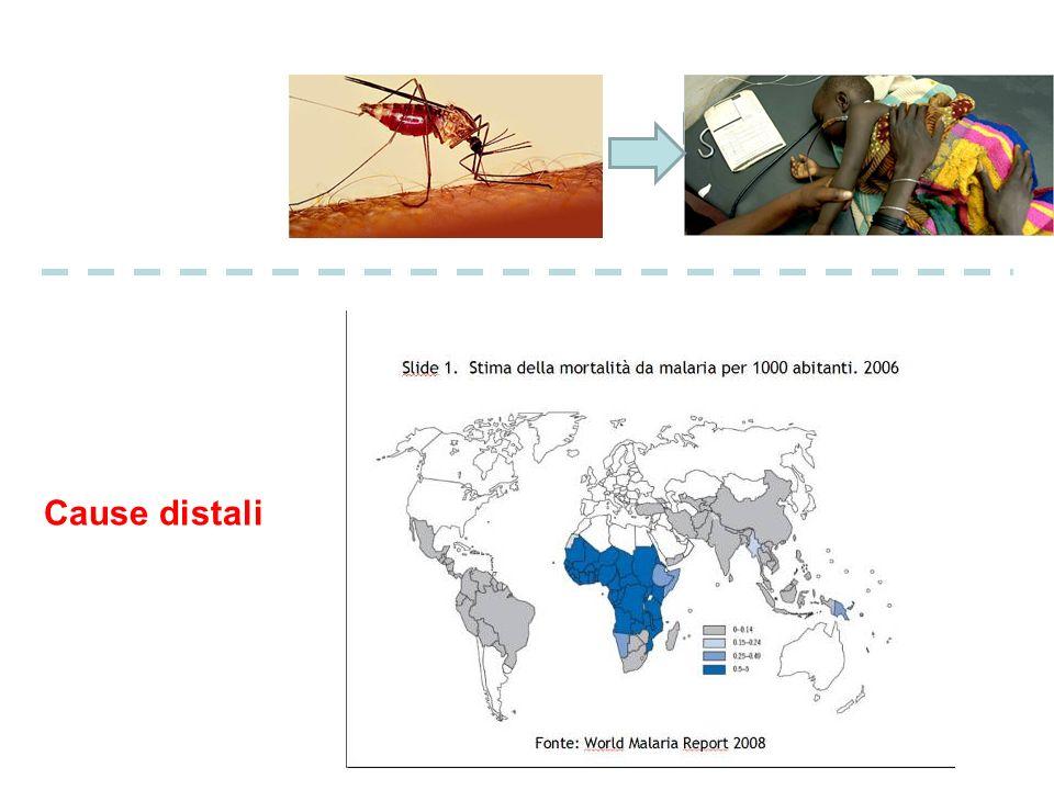 Sopravvivenza per tumore a Torino Anni 1985-1998