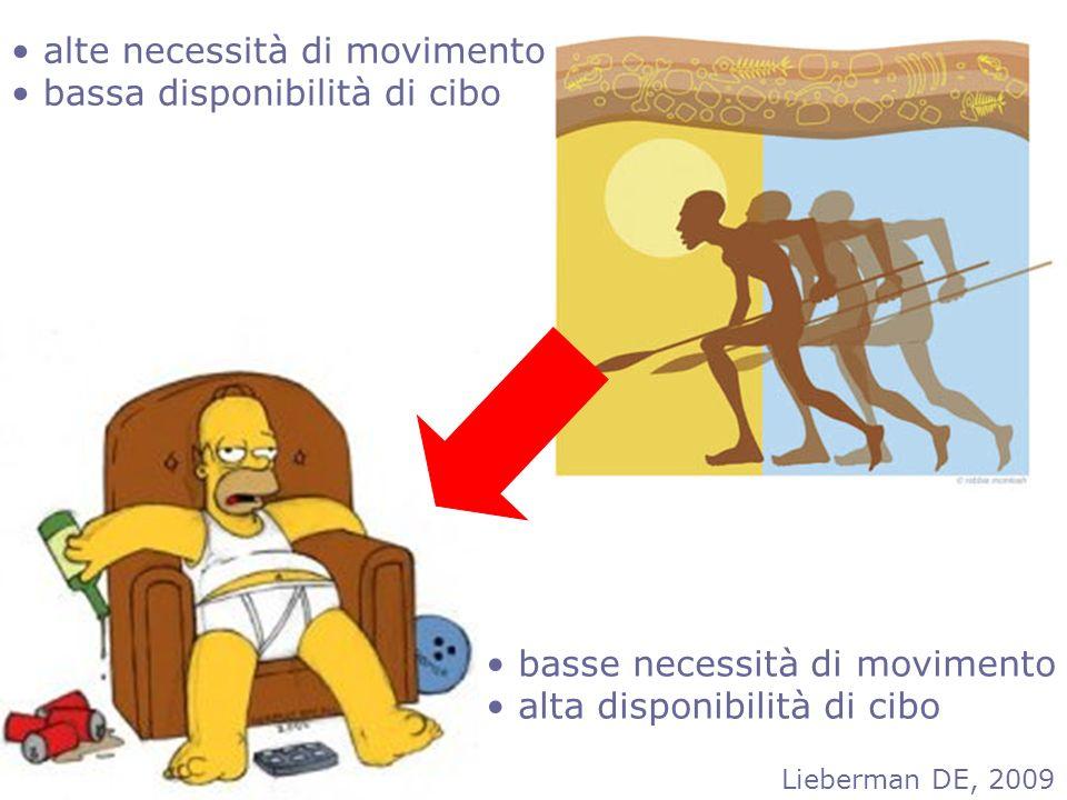 LARN livelli di assunzione raccomandati di nutrienti LARM livelli di assunzione raccomandati di MOVIMENTO X Gli effetti del movimento seguno il principio della SPECIFICITA