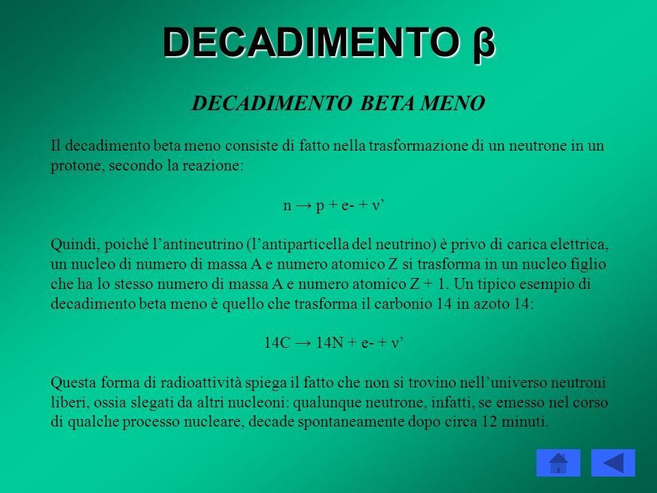 DECADIMENTO β Decadimento beta Forma di radioattività che comporta la trasformazione di un nucleo padre instabile in un nucleo figlio di numero atomic