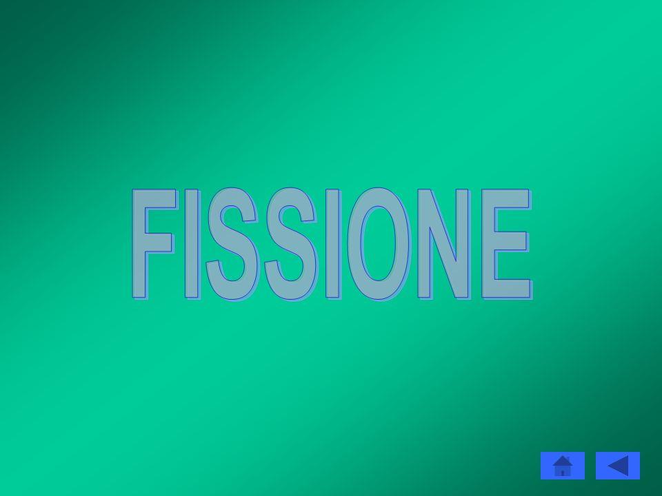 REAZIONI NUCLEARI Fusione e fissione La fissione e la fusione sono i due processi nucleari da cui si può ricavare energia. La prima consiste nella sci