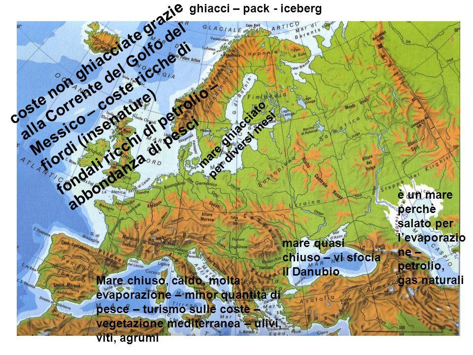 ghiacci – pack - iceberg coste non ghiacciate grazie alla Corrente del Golfo del Messico – coste ricche di fiordi (insenature) fondali ricchi di petro